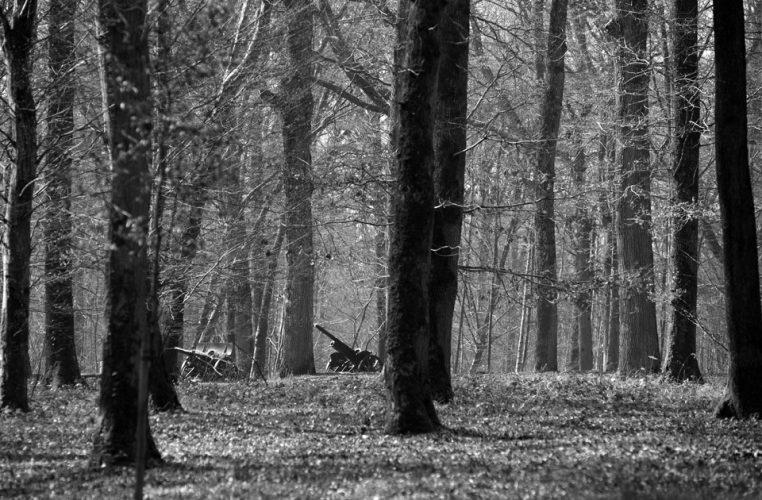 Battle of Belleau Wood WW1, France. March 2014