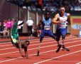 Atheltic -  IPC World Para Athletics Championships
