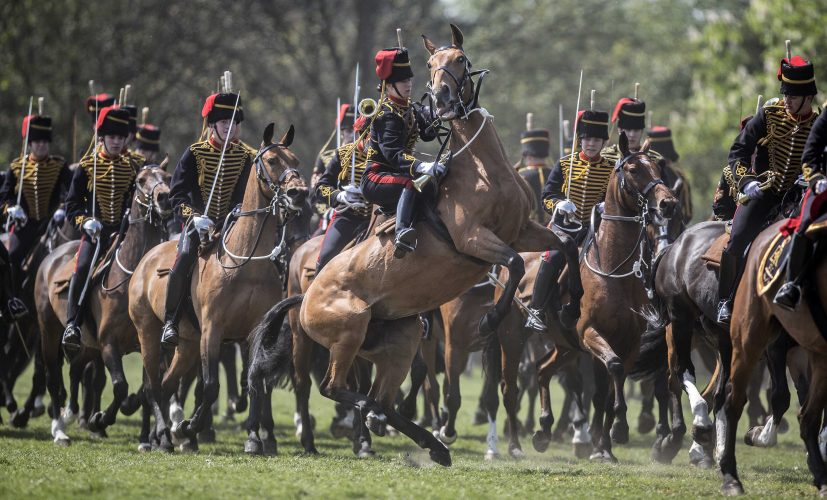 Kings troop inspection parade. London 2014