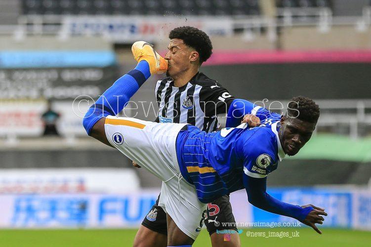 Premier League Newcastle United v Brighton and Hove Albion