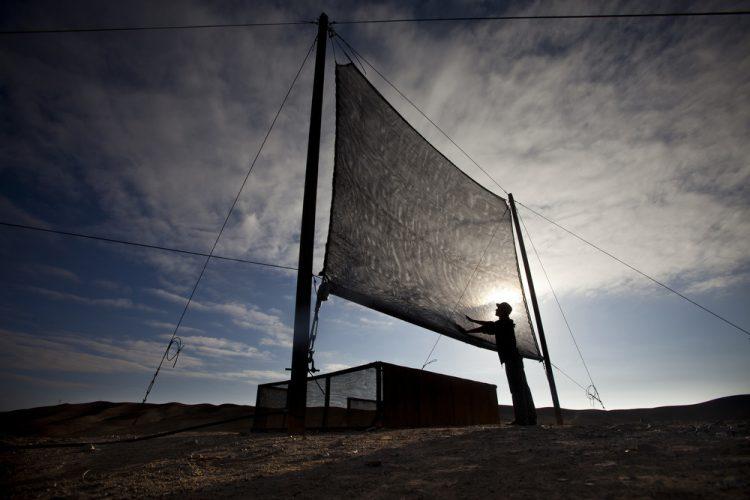 A man checks a fog catching net in the Atacama desert in Chile