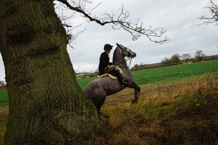 Boxing Day Fox Hunt - Shropshire, England