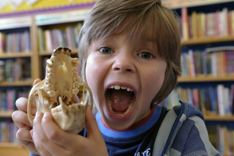 Boy with Monkey Skull,  Tower Hamlets Library.