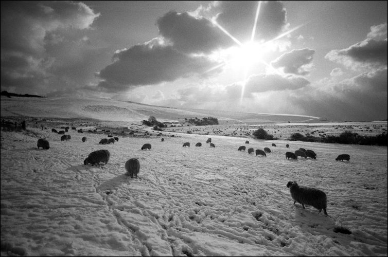 PIC JON BOND SUSSEX SNOW SCENE 1987