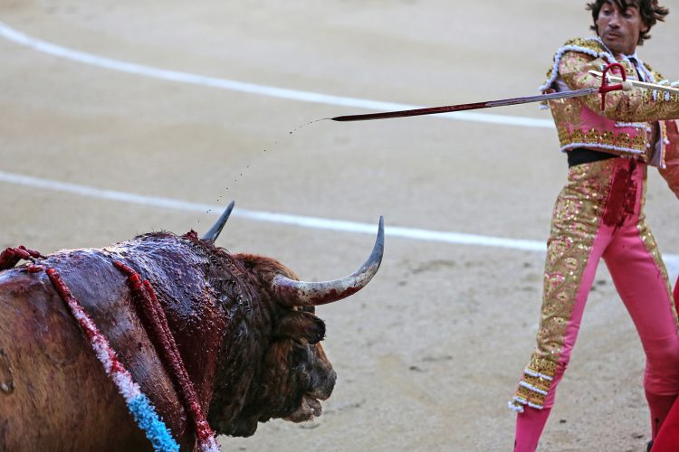 Curro Diaz removes a sword during the stage of death at Las Ventas bullring Madrid