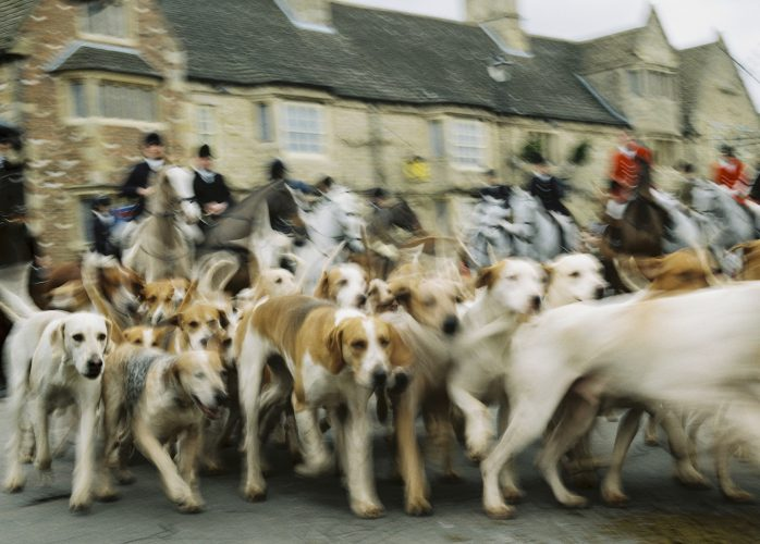 The Milton (Fitzwilliam) Hunt leave Stilton village, 26th December 2015.