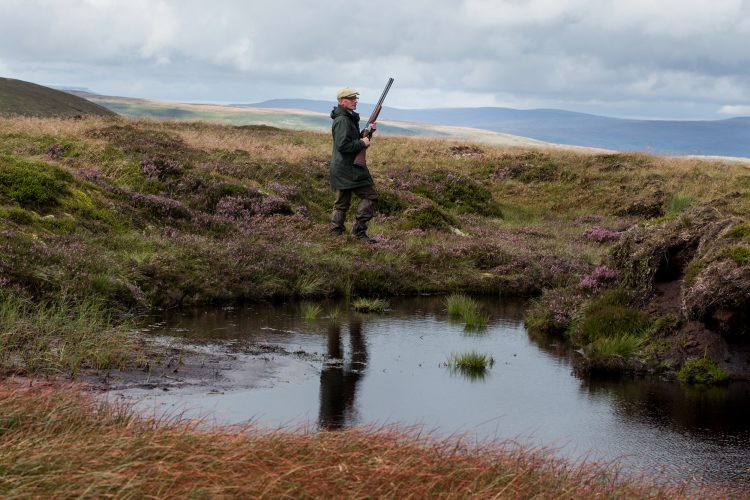 Grouse shoot in North Yorkshire.