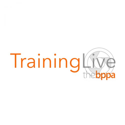 training live example copy